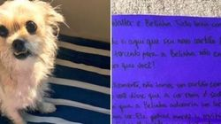 Esta cachorra destruiu o cartão de crédito do dono. E ele recebeu uma surpresa do