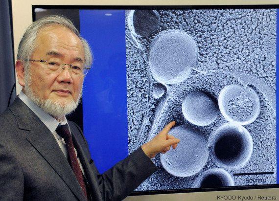 Cientista japonês ganha o Nobel de medicina por trabalho sobre reciclagem das