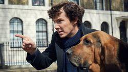 Benedict Cumberbatch sobre nova temporada de 'Sherlock': 'Pode ser o