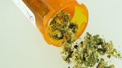 Reino Unido admite, finalmente, efeitos medicinais da