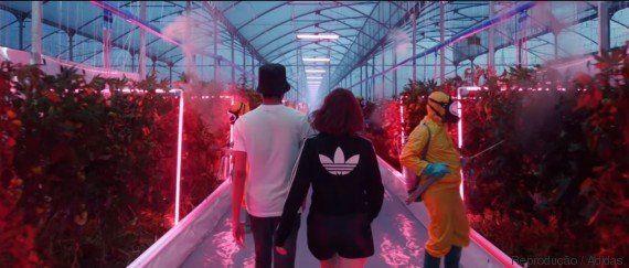 Adidas inclui plantação de maconha em campanha que 'prevê o futuro'