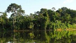 Projeto para fortalecimento do Mosaico da Calha Norte do Pará é