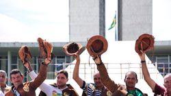 Querem legalizar a crueldade: Deputados tentam liberar vaquejada no