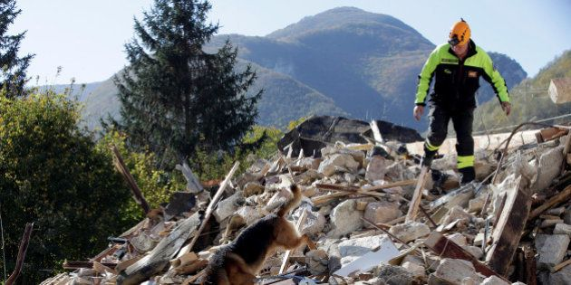 A firefighter with a rescue dog search a collapsed building after an earthquake in Borgo Sant'Antonio...