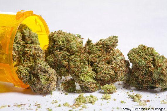 Conselho de medicina de SP pede fim da criminalização de usuários da