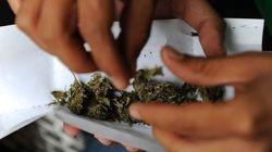 Califórnia está a um passo de legalizar maconha e cidades podem lucrar US$ 30
