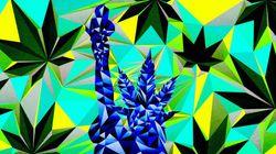 Zona livre para a maconha: Eleitores dos EUA poderão legalizar erva pra 1/4 da