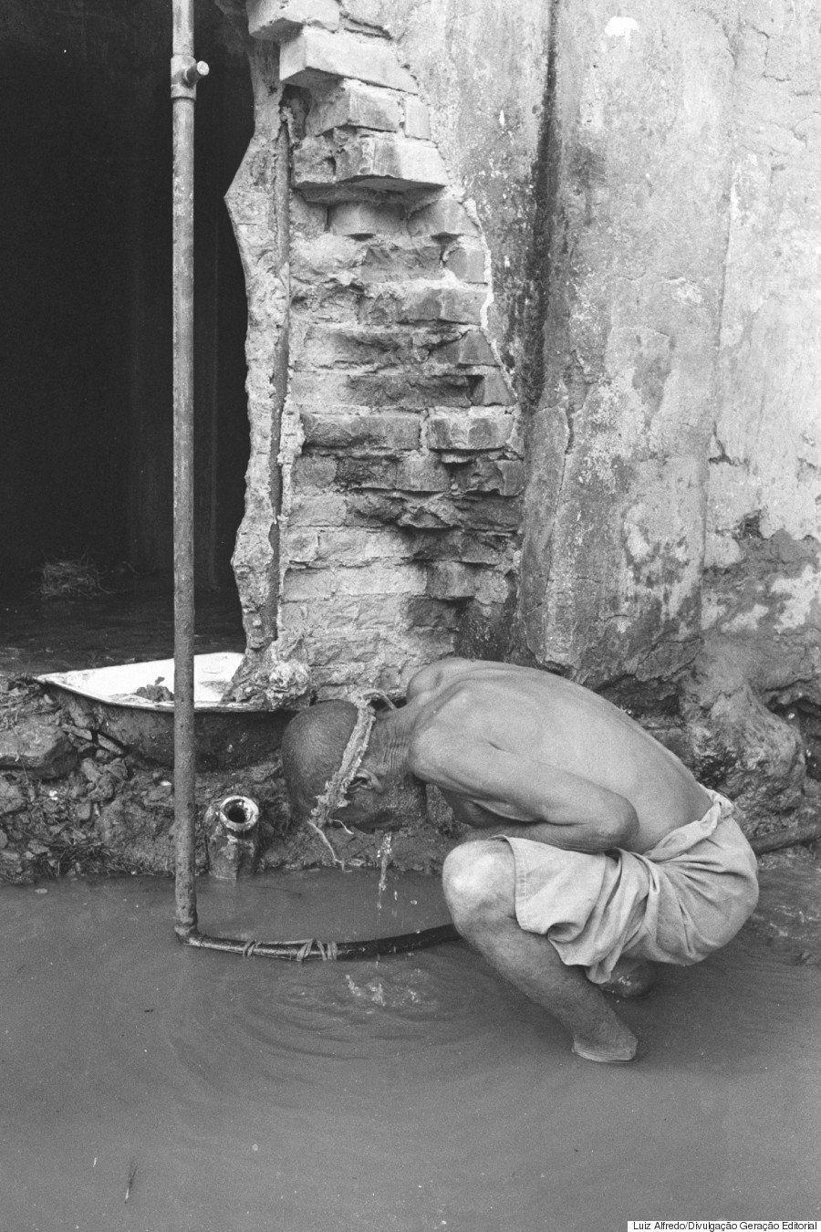O holocausto brasileiro e os estragos irreparáveis do