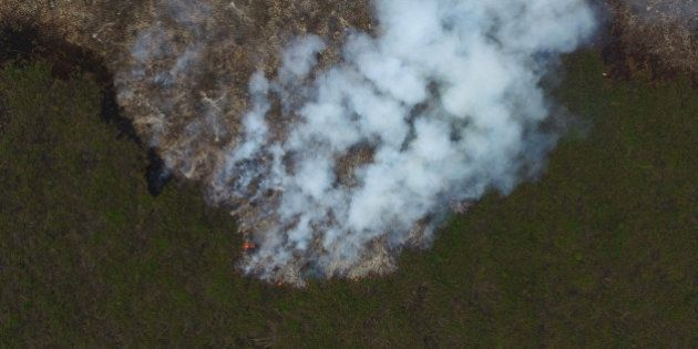 Smoke rises from a forest fire in this aerial photograph taken in Ogan Komering Ilir, South Sumatra,...
