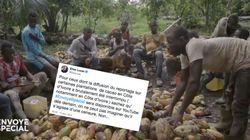 """""""Envoyé spécial"""": Élise Lucet ironise sur une """"interruption brutale"""" en Afrique de la diffusion d'un"""