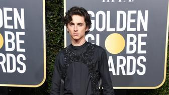 BEVERLY HILLS, CA - JANUARY 06:  Timothee Chalamet attends the 76th Annual Golden Globe Awards at The Beverly Hilton Hotel on January 6, 2019 in Beverly Hills, California.  (Photo by Frazer Harrison/Getty Images)