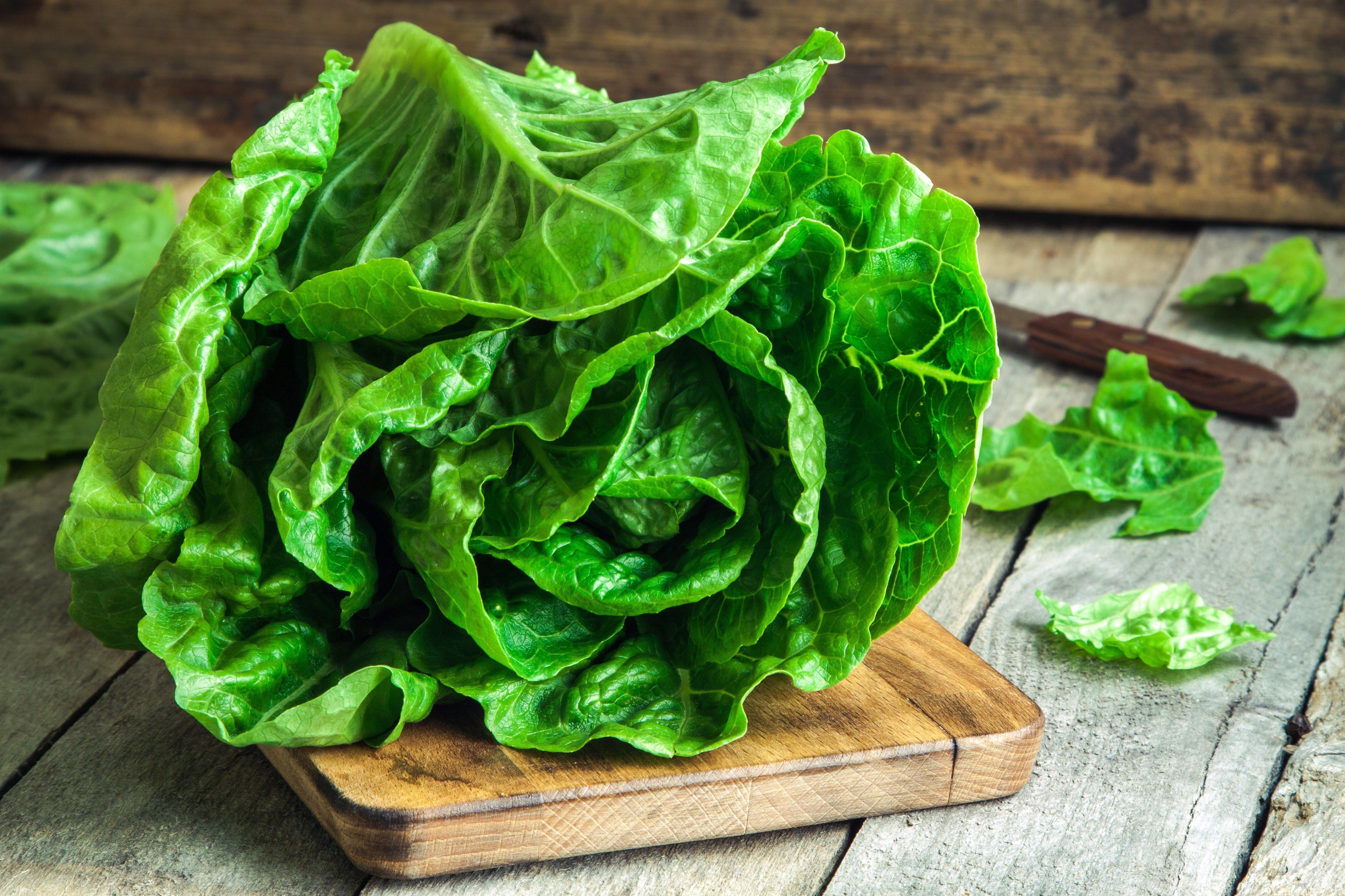 As melhores folhas para saladas, classificadas segundo seu valor