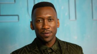 LOS ANGELES, CA - JANUARY 10:  Mahershala Ali attends the premiere of HBO's 'True Detective' Season 3 at Directors Guild Of America on January 10, 2019 in Los Angeles, California.  (Photo by Gabriel Olsen/FilmMagic)