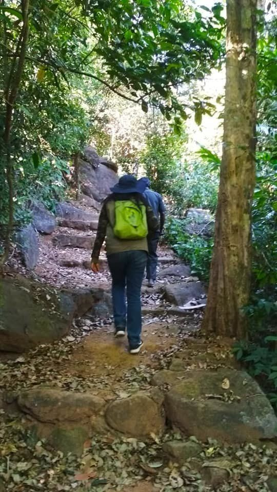 Defence PRO Dhanya Sanal To Be First Woman To Trek To Agasthyarkoodam Peak After HC