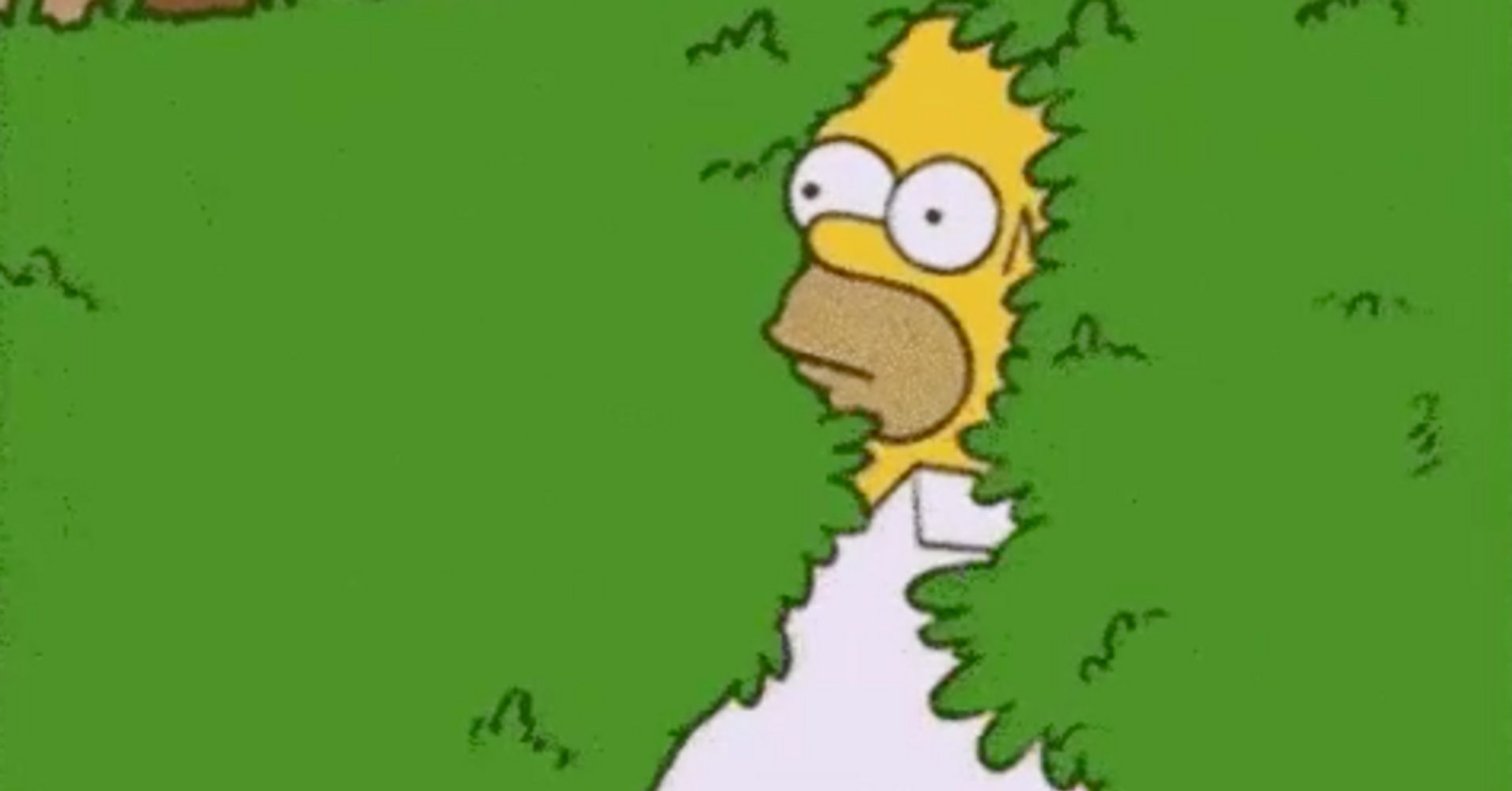 Homer Simpson Uses His Own 'Backing Into Bushes'On