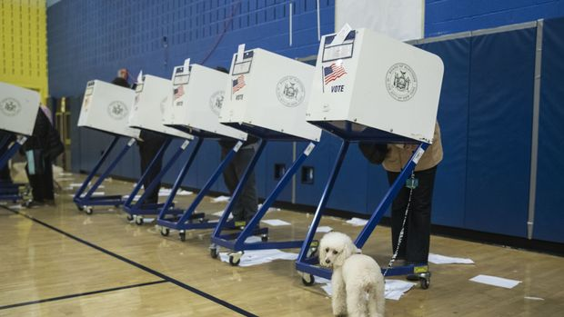 NEW YORK, USA - NOVEMBER 06: A voter stands behind a voting booth with a dog during the midterm election at the High School Art and Design polling station in Manhattan, New York, United States on November 06, 2018. (Photo by Atilgan Ozdil/Anadolu Agency/Getty Images)