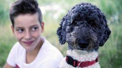 «Γιατί να κοιτάζουμε τα ζώα;»: Το 21ο Φεστιβάλ Ντοκιμαντέρ Θεσσαλονίκης ανοίγει με ένα ξεχωριστό