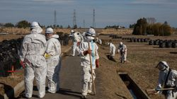 Four Years After Fukushima, India Still None The