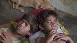 How 'Kaaka Muttai' And 'Dil Dhadakne Do' Straddle Two