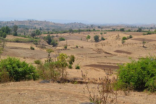 Memoirs From Mokhada: My Transformational Journey Into Rural India (Part