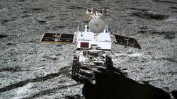 Αναπτύχθηκαν οι σπόροι βαμβακιού της κινεζικής διαστημικής αποστολής στη