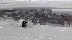 Hundewelpe droht, in eisigem See zu erfrieren – zum Glück sind Spaziergänger in der