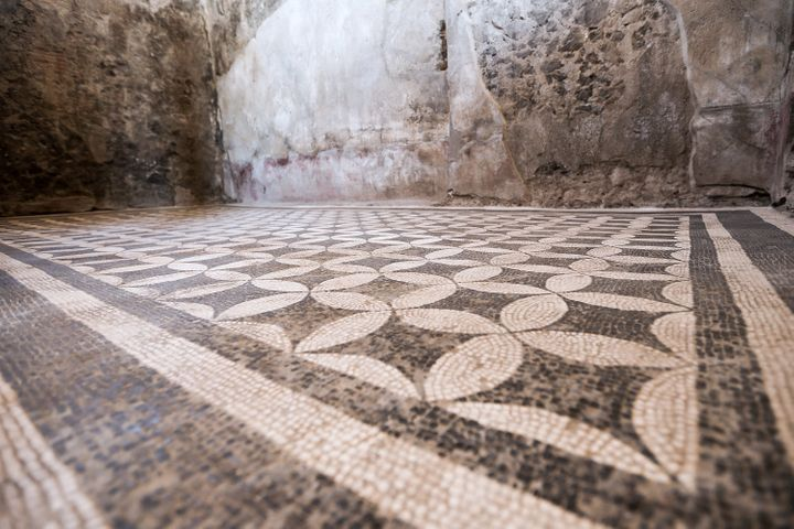 Jim Bachor said the mosaics of the Pompeii archaeological site in Italy have inspired his art.
