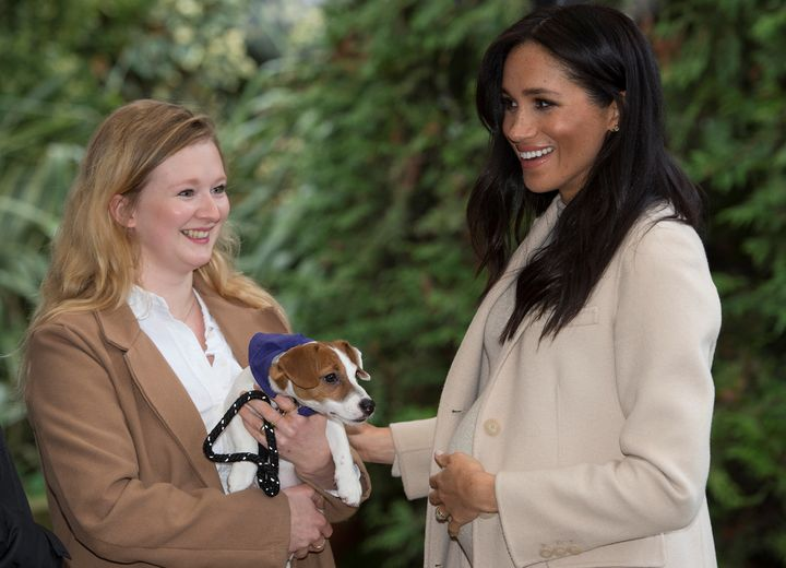 The Duchess of Sussex hanging around with the cute pups at Mayhew in London.