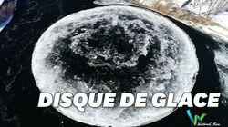 Ce disque de glace très rare s'est formé au beau milieu d'un cours