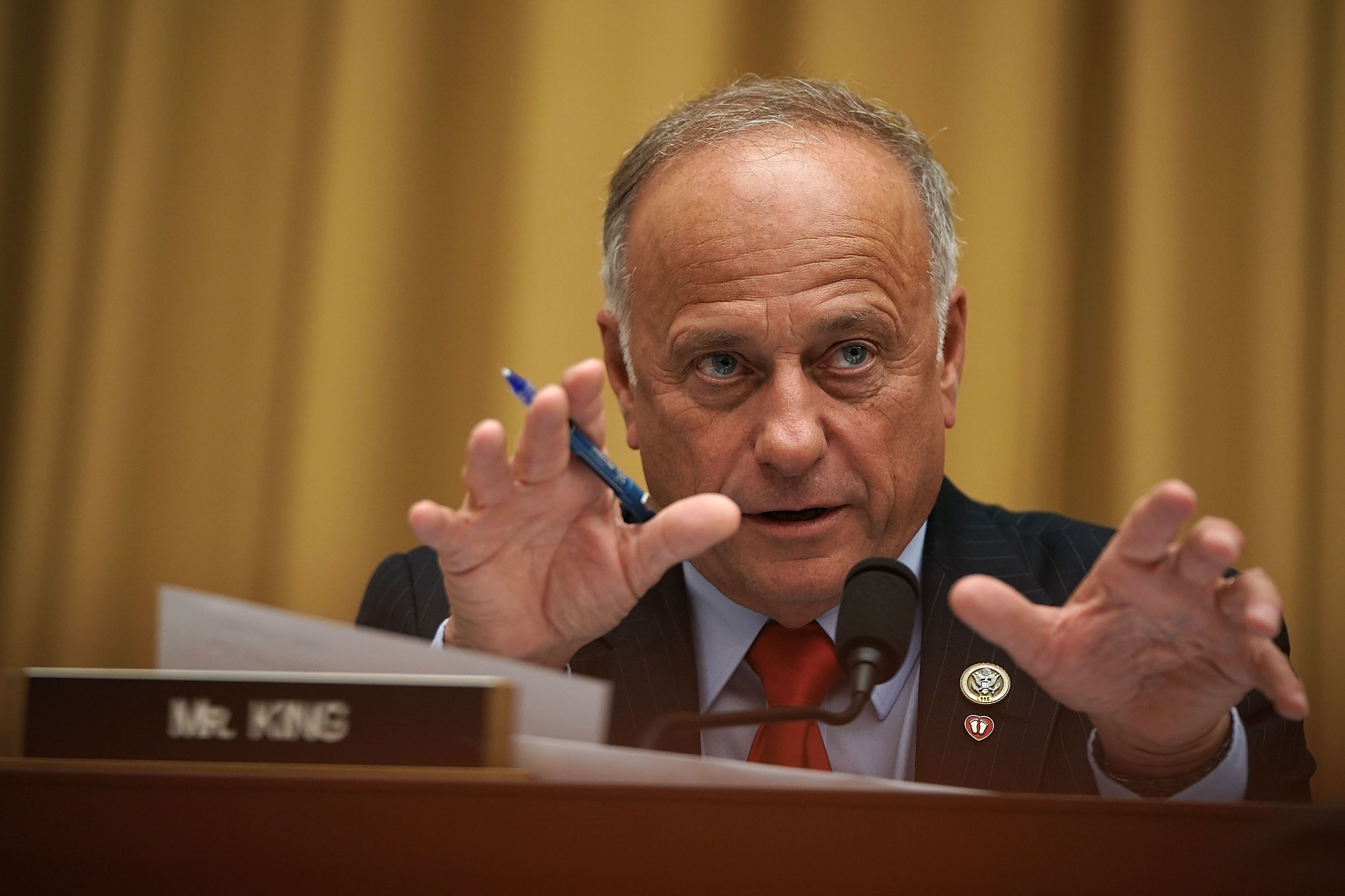 WASHINGTON, DC - JUNE 28:  U.S. Rep. Steve King (R-IA) speaks during a hearing before the House Judiciary Committee June 28, 2018 on Capitol Hill in Washington, DC. The committee held a hearing on 'Oversight of FBI and DOJ Actions Surrounding the 2016 Election.'  (Photo by Alex Wong/Getty Images)