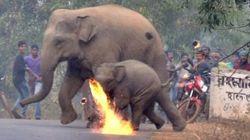 Ινδία: Αγρότες πέταξαν μπάλες από φωτιά σε