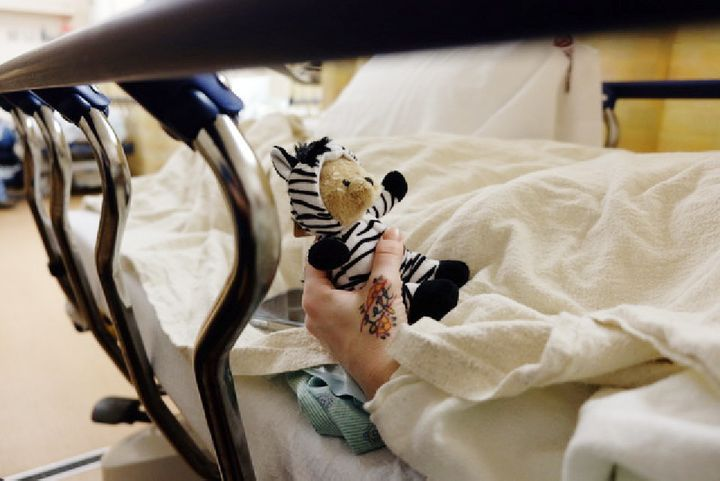 "A post-surgery recovery gift. Medical students are often trained to ""think horses, not zebras"" when looking for the cause of"