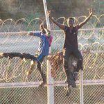 Le gouvernement espagnol veut retirer les barbelés entre Ceuta et Melilla et la frontière
