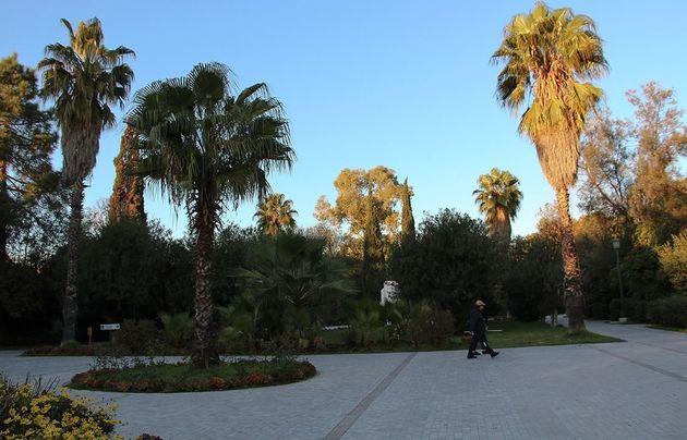Η Περιφερειάρχης Ρένα Δούρου απαντά σε πέντε βασικά ερωτήματα για το Πεδίο του