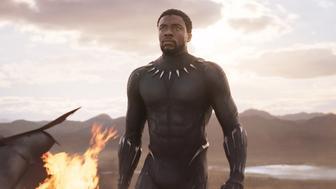"""Es hat einige besondere Nominierungen für die diesjährige Oscar-Verleihung gegeben. """"Black Panther"""" etwa hat Geschichte geschrieben."""