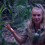 Dschungelcamp: Evelyn kommt von Toilette zurück – alle regen sich