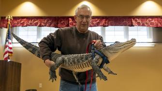 Joie Henney and emotional support alligator
