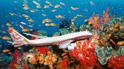 Le Bahreïn coule un 747 pour en faire un parc