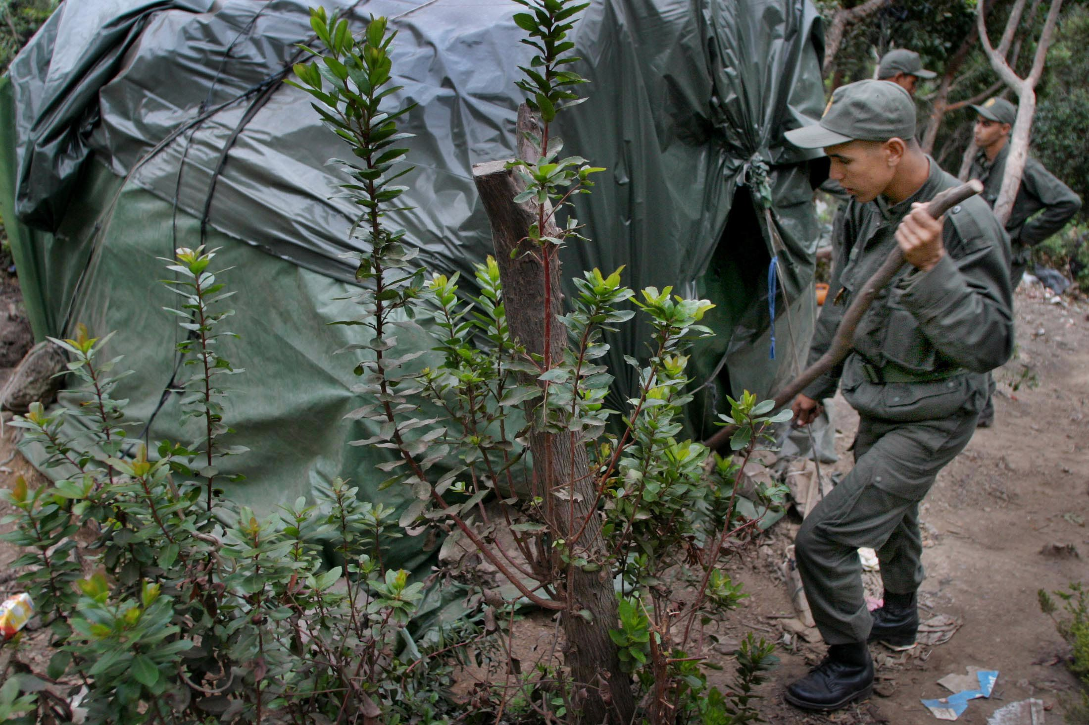 Le service militaire devrait bien être facultatif pour les femmes et les Marocains résidant à