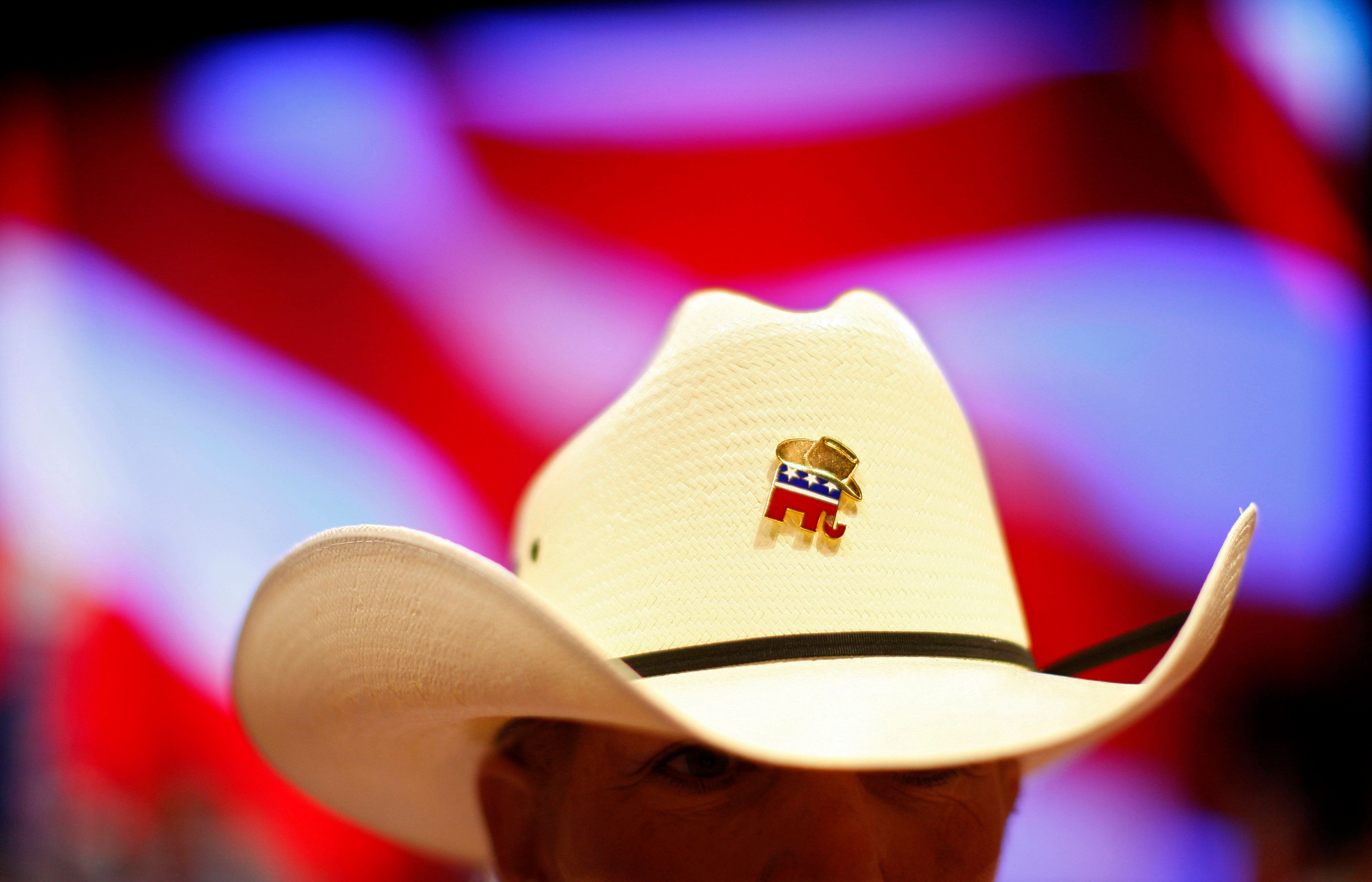 Texas delegate Kathie Whitford-Freeman wears a Republican pin on her hat at the 2008 Republican National Convention in St. Paul, Minnesota September 1, 2008.   REUTERS/Jim Young   (UNITED STATES)      US PRESIDENTIAL ELECTION CAMPAIGN 2008  (USA)