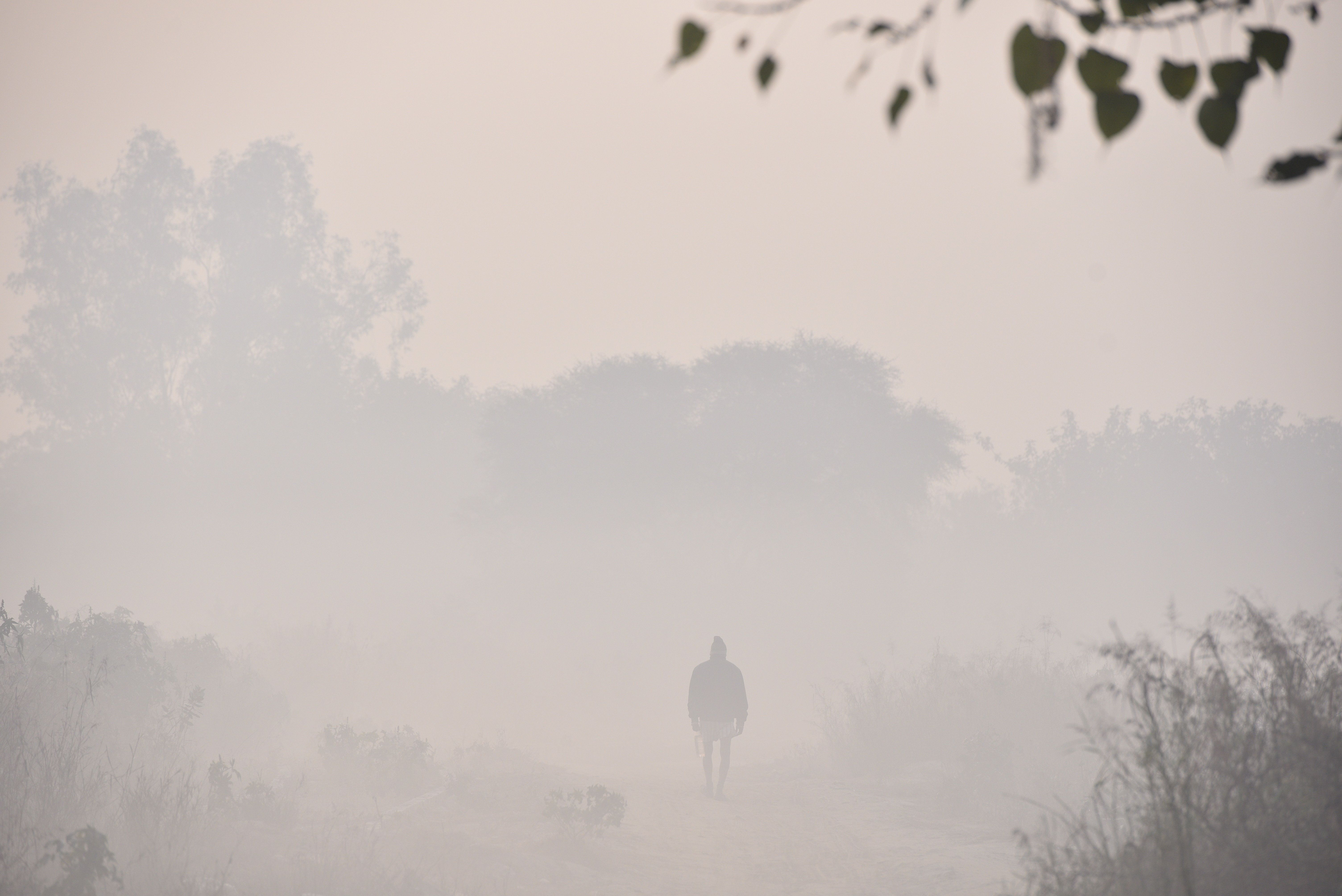 Life Expectancy Of Delhiites Will Increase By 3 Years If Air Quality Improves, Says