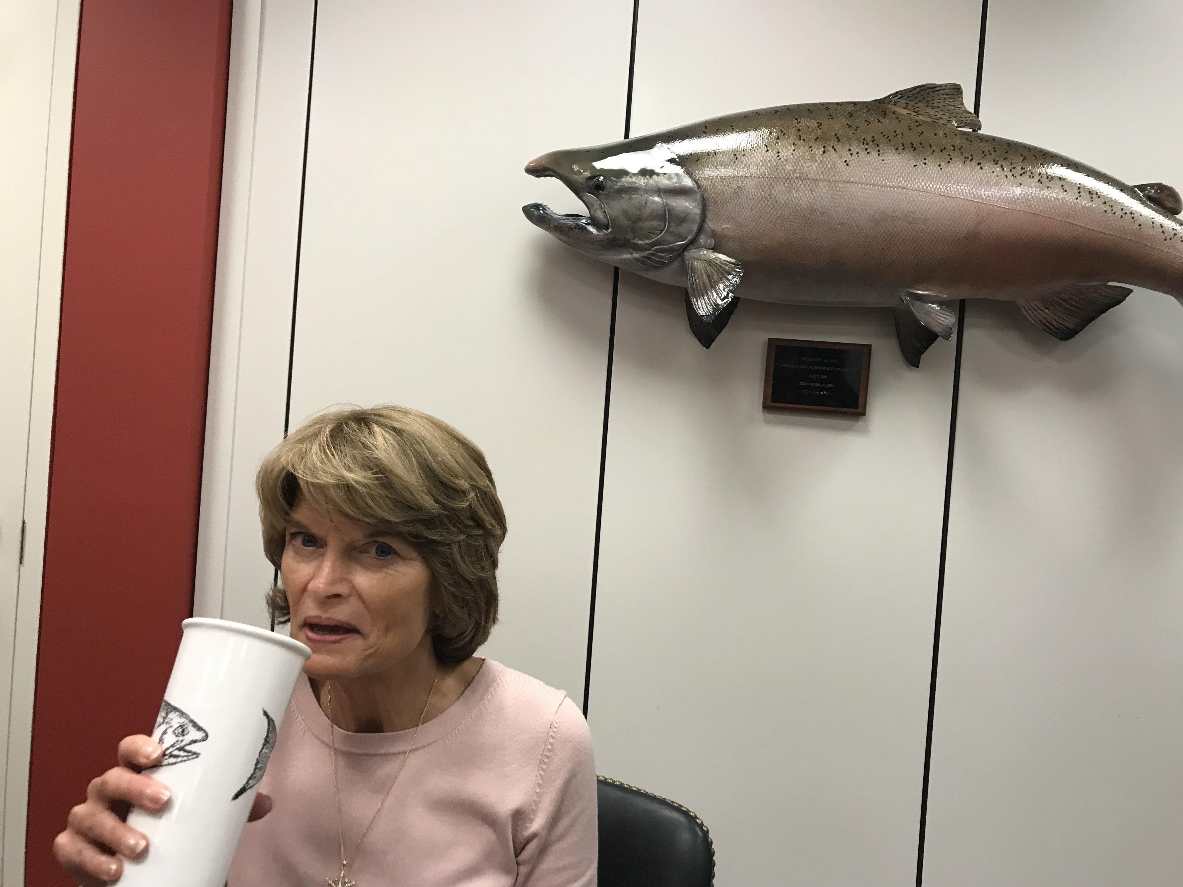 "Sen. Lisa Murkowski shares her office with ""Walter,"" a 63-pound salmon."