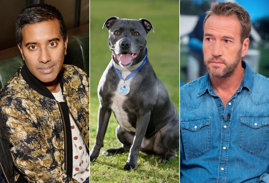 ITV's Top 100 Dogs Has Somehow Gifted Us This Truly Odd Celebrity