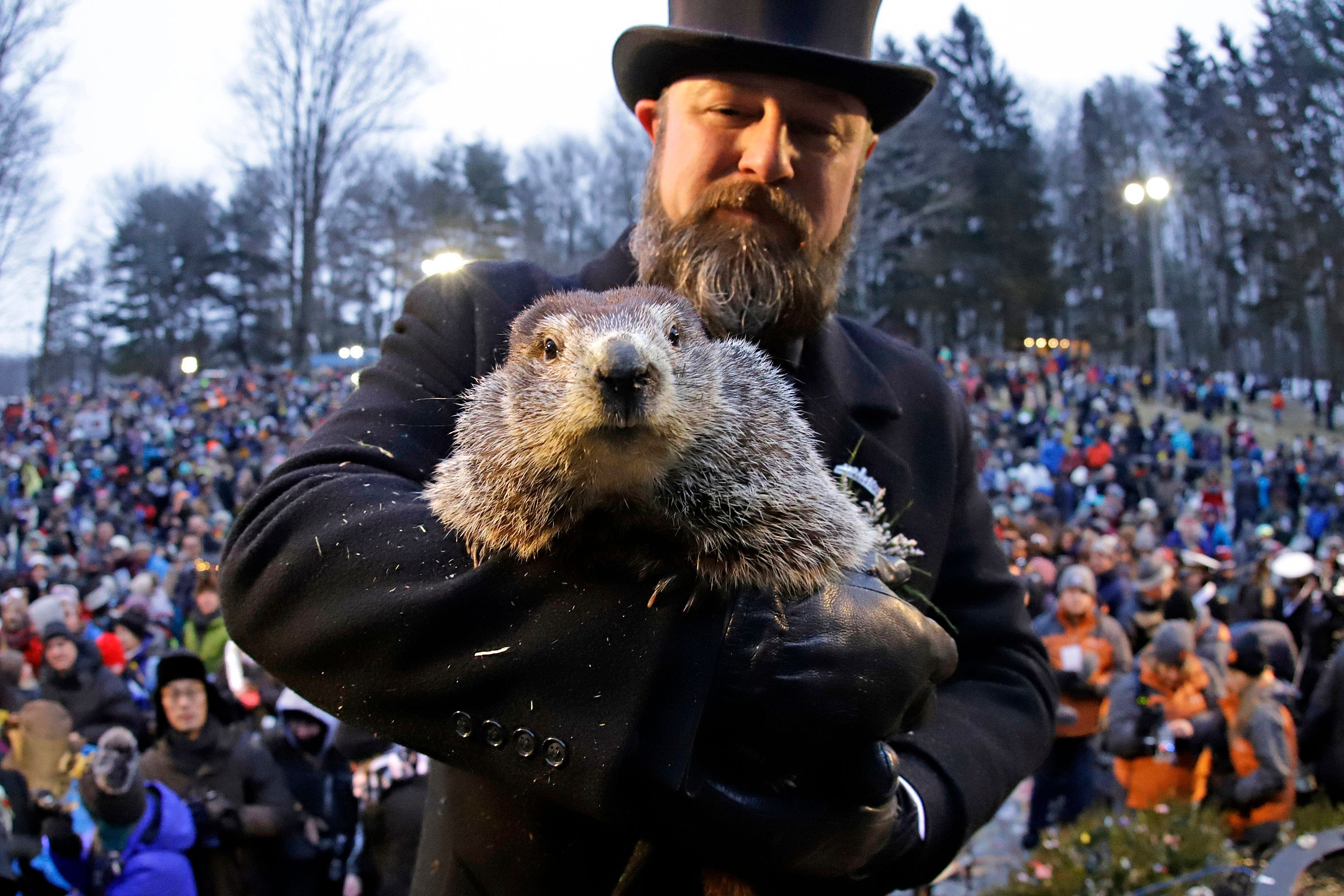 Groundhog Club co-handler Al Dereume holds Punxsutawney Phil, the weather prognosticating groundhog, in front of the crowd gathered for the 133rd celebration of Groundhog Day on Gobbler's Knob in Punxsutawney, Pa. Saturday, Feb. 2, 2019. Phil's handlers said that the groundhog has forecast an early spring. (AP Photo/Gene J. Puskar)