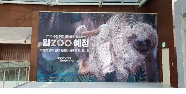 영등포 타임스퀘어에 걸린 '실내동물원 개장 예고'를 두고 엇갈린 반응이 나오고