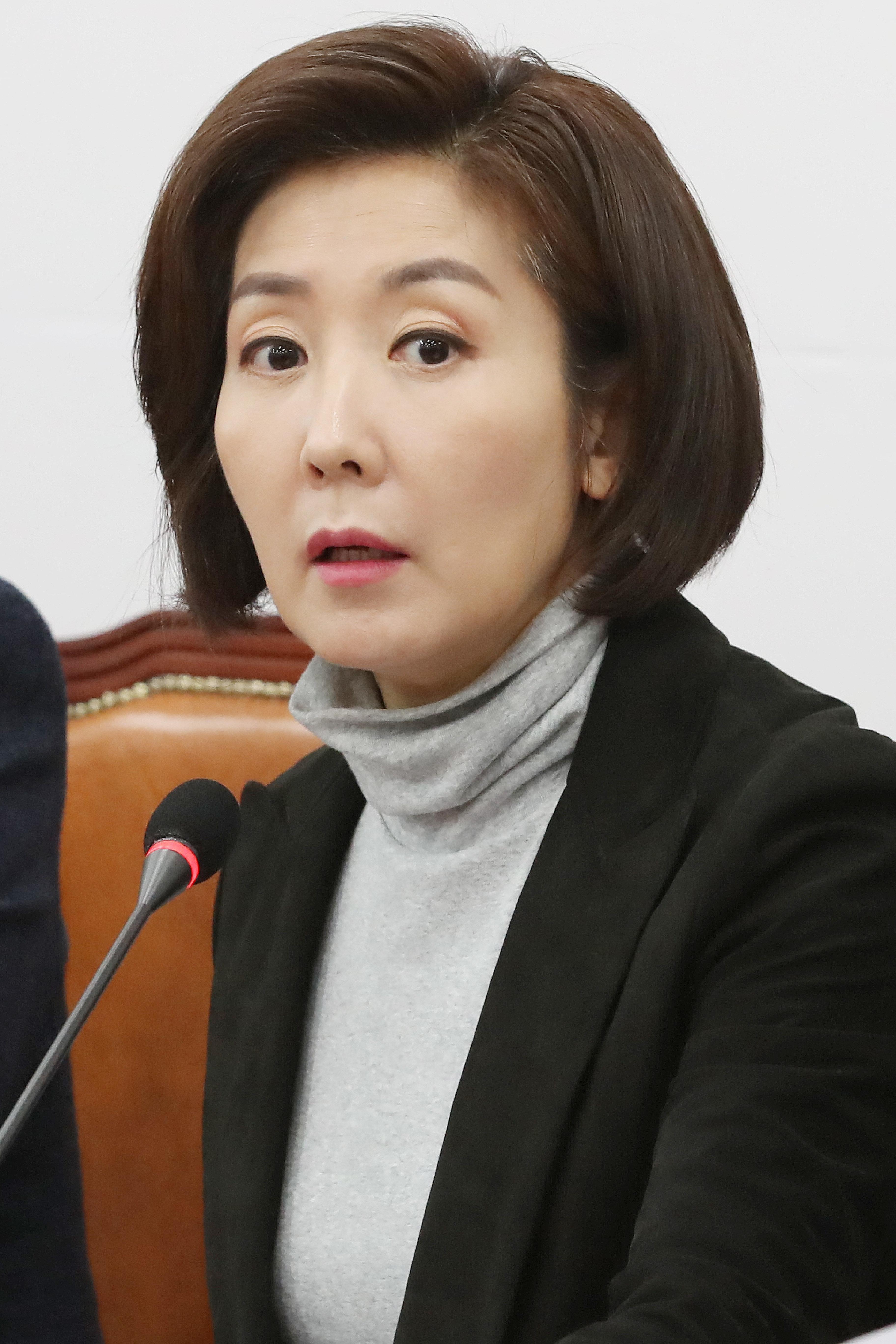 나경원 원내대표가 '종전선언+평화협정'에 반대하는