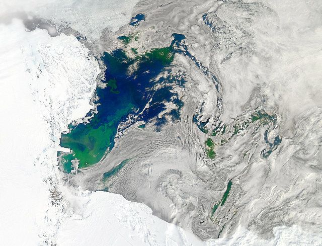 This true-color image captures such a phytoplankton bloom in the Ross Sea on January 22, 2011.