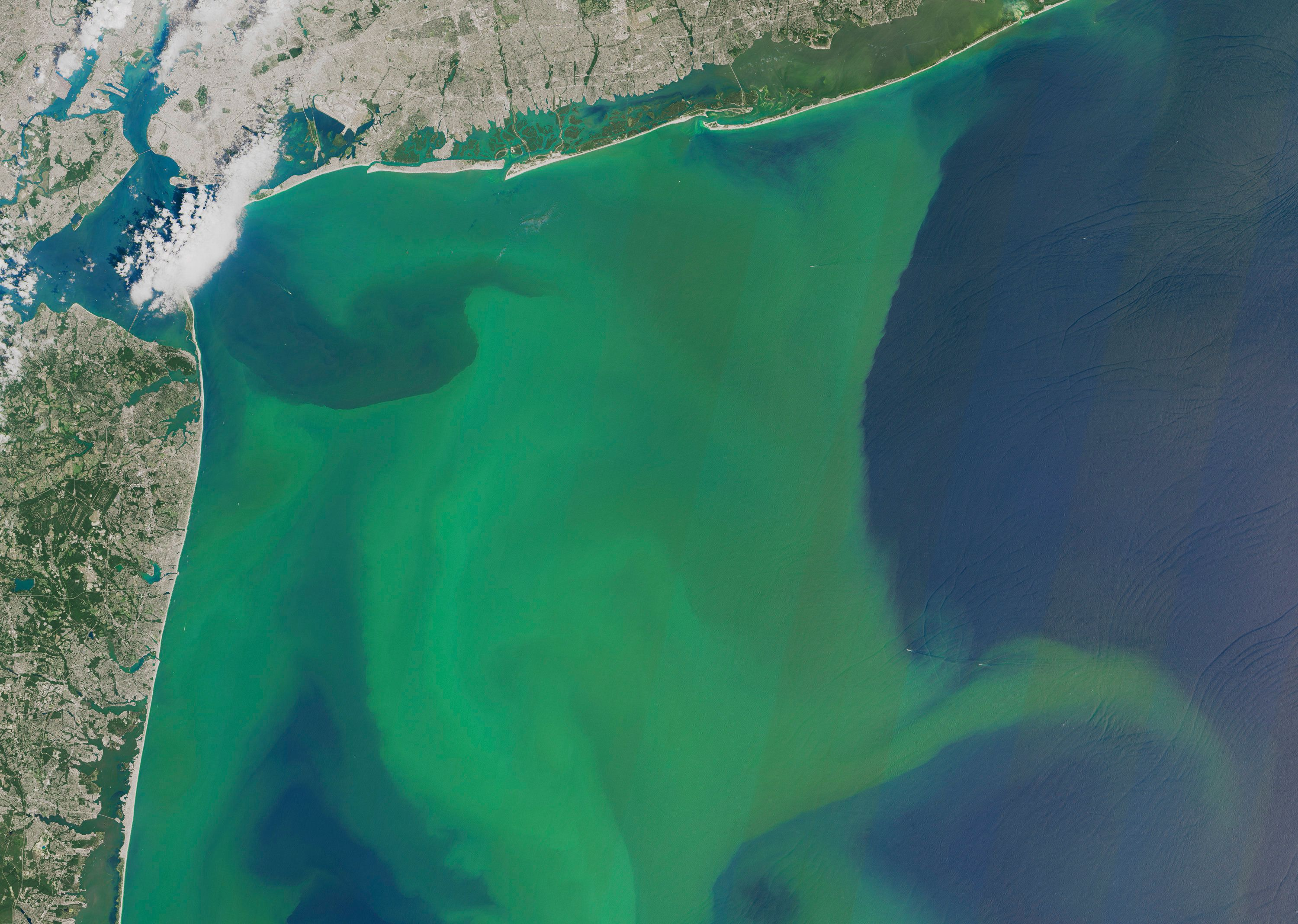 In this image provided by NASA, taken Aug. 3, 2015, phytoplankton is seen off the coast of New York, top and New Jersey, left. A new study projects that global warming's increased rains will mean more nitrogen flowing into U.S. waterways, which can then trigger more massive blooms of algae, floating green mats, and dead zones with almost no oxygen. This handout NASA satellite photo shows a large bloom of phytoplankton off the New York and New Jersey coast in August 2015. (NASA via AP)