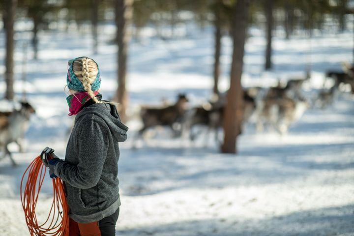 A Sámi reindeer herder.