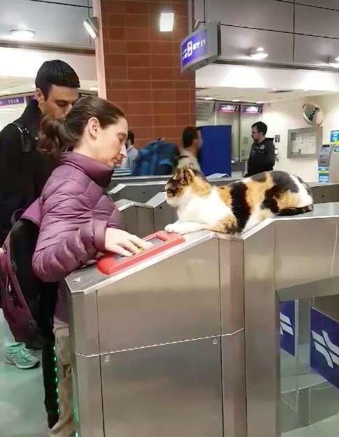 이스라엘 어느 지하철역에는 사람들을 신경쓰이게 하는 게